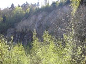 Der Bühlertal-Granit tritt am westlichen Rand des Nordschwarzwalds auf.