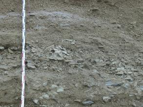 Nahaufnahme von graubraunem Hangschutt in einer Kiesgrube. Links ist ein Maßstab angelehnt.
