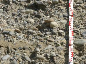 Im Bild sind größere und kleinere Kiese, verbacken in Bodenmaterial, zu sehen. Links unten ist eine schmale Lage Sand zu erkennen, rechts ein Maßstab.