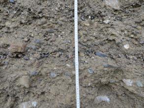 Detailaufnahme von Kies und Schotter in feuchtem Erdreich. Ein mittig angebrachter Maßstab zeigt die Größenverhältnisse an.