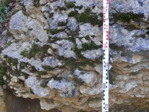 Nahaufnahme von teils bräunlichem, teils bläulich geflecktem Gestein. Das Gestein ist knollig und wellig und hängt über. Die Zwischenräume sind bemoost.