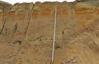 Man sieht die Abbauwand einer Sandgrube. Das hellbraune, im oberen Bereich rötliche Material verläuft zwischen Fuß und Decklage in schräger, nach rechts ansteigender Richtung. Ein angelehntes Maßband zeigt die Höhe der Wand.