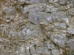 Das Bild zeigt eine kleine Schrägabschiebung von links oben nach rechts unten in einer Gesteinswand aus geklüftetem, beige-grauem Gestein.