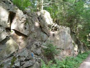 Aufschluss eines hell- bis mittelgrauen Gesteins im Wald. Das Gestein ist bruchhaft deformiert, die einzelnen Blöcke sind unterschiedlich groß. Rechts unten im Bild ist noch ein Teil eines Weges zu erkennen.