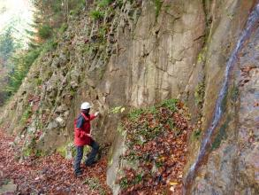Blick von rechts auf eine Wand aus grauem, teilweise bräunlichem, geklüftetem Gestein in herbstlichem Wald. Mittig vor der Wand steht ein Mensch mit roter Jacke und weißem Schutzhelm.