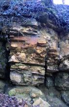 Grobe Tertiärkonglomerate an einer alten Abbauwand