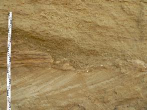Nahaufnahme einer Abbauwand aus Sand, deren unterste Schicht in schräger, nach rechts aufsteigender Richtung verläuft. Links ist ein Maßband angelehnt. Daneben zeigt sich ein kleiner ovaler Einschluss mit dunklen, waagrechten Streifen.