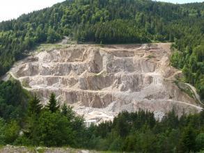 Der Seebach-Granit ist ein hell- bis mittelgrauer Zweiglimmergranit.