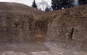 Blick auf eine Abbauwand eines Steinbruchs. In der Mitte der Wand ist das dunkelrote Gestein überschoben und es haben sich Kofferfalten gebildet.