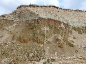 Das Bild zeigt eine mehrere Meter hohe Abbauwand in einem Steinbruch. Das obere Drittel besteht aus beige-gräulichem Gestein, darunter befindet sich gelb-braunes Gestein. Das untere Drittel der Wand wird von Schutt verdeckt.