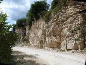 Blick von der Seite auf eine Steinbruchwand aus hellem, gebanktem und geklüftetem Gestein. Vor der Wand verläuft ein Weg. Links im Bild und über der Wand wachsen Bäume.