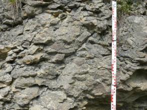 Nahaufnahme einer grauen, bröckeligen Gesteinswand. Das Gestein weist eine nach rechts geneigte, schräg verlaufende Spaltung auf.
