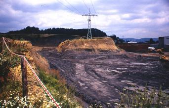 Blick in eine heute stillgelegte Tongrube: Die Sohle der Grube ist dunkelgrau, die Wände sind mit Gras bewachsen. Im Hintergrund mittig befindet sich ein Strommast, dahinter ein bewaldeter Hügel.