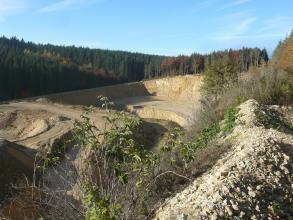 Blick von oben über das Betriebsgelände eines Steinbruchs, in welchem helles Gestein abgebaut wird. Der Steinbruch ist von Bäumen umsäumt.