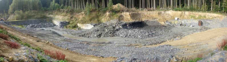 Übersichtsaufnahme eines Steinbruches mit hellgrauem Gestein. Das Bild zeigt vor einer bewaldeten Böschung niedrige Abbauwände, Steinhaufen und Fahrwege.