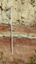 Nahaufnahme einer Abbauwand: Das anstehende Gestein zeigt eine Wechselfolge aus rotbraunen und hellgrau-beigen Gesteinsschichten. Mittig vor der Wand befindet sich ein Maßstab. Am unteren Bildrand sind ein paar Zweige von Büschen zu sehen.