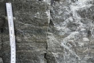 Nahaufnahme von dunkelgrauem Gestein mit senkrecht verlaufendem Riss in der Mitte und weißlichen Kristallen rechts. Links ist ein Maßstab angebracht.