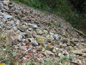 Blick von der Seite auf ein Geröllfeld aus grauen, gleichmäßig großen Gesteinsblöcken. Diese sind zum Teil mit Moos überzogen. Im Hintergrund befindet sich Wald.