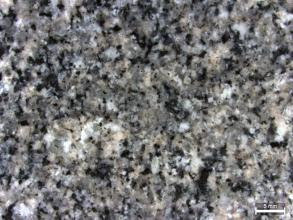 Detailaufnahme eines Gesteins mit grauem Erscheinungsbild. Neben den sehr häufigen grauen Mineralen finden sich auch helle und schwarze Minerale. Rechts unten befindet sich ein Maßstab.