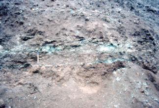 Teilansicht einer Gesteinswand. Im rötlich braunen, verwitterten Gestein sind in der Bildmitte horizontal verlaufende, grünliche Streifen erkennbar.