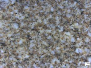 Leicht verschwommene Detailaufnahme eines Gesteins mit hellen Mineralen, grau-grünlichen Mineralen und rötlichen Mineralen. Die Minerale sind regellos. Rechts unten befindet sich ein Maßstab.