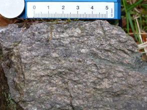Handstück eines massigen, mittelgrauen Gesteins, welches nur eine undeutliche Einregelung der Kristalle zeigt. Am oberen Bildrand befindet sich ein cm-Maß als Maßstab.