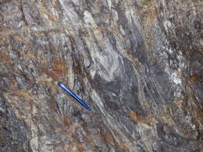 Nahaufnahme eines Gesteins, welches helle und dunkle Bereiche aufweist. Diese Bereiche sind miteinander verschlungen. Teilweise ist das Gestein orangerot angewittert. Auf dem Gestein liegt ein blauer Kugelschreiber als Maßstab.