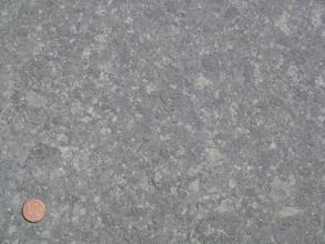 Blick auf eine Gesteinplatte aus mittelgrauem Gestein, in welchem viele hellgraue, kleine und unregelmäßig geformte Flecken sind. Links unten in der Ecke befindet sich eine Münze als Maßstab.