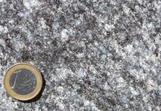 Großaufnahme eines Gesteinsstückes mit weißlich grauer Marmorierung. Links unten dient eine Euro-Münze als Größenvergleich.