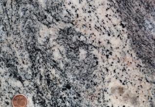 Nahaufnahme einer streifigen und gepunkteten Gesteinsoberfläche. Die Farbskala reicht von schwarzgrau bis rosa. Unten links dient eine Cent-Münze als Größenvergleich.