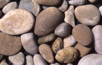 Nahaufnahme von kleineren und größeren Kieselsteinen, teils flach, teils rundlich. Die Farben reichen von hellem Grau bis zu Brauntönen.