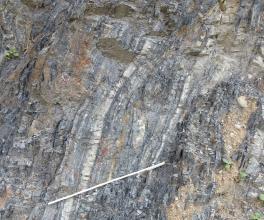 Blick auf eine bläulich graue bis braune Gesteinsfläche mit vertikaler Schichtung. Über einem am unteren Bildrand angebrachten Maßstab steigen zudem weißliche Streifen hoch.