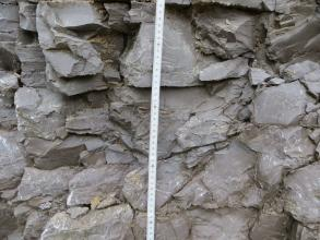 Nahaufnahme eines gräulichen Gesteins, welches stark geklüftet ist. Zwischen den einzlnen Blöcken aus Kalkstein befinden sich dunklere Tonmergelfugen. Vor dem Aufschluss befindet sich ein Maßstab.