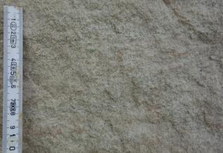 Großaufnahme von gelblich grauem, körnigem Gestein.