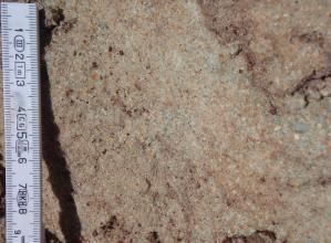 Großaufnahme von gelblich grauem bis rötlich grauem Gestein, in das sich dunklere Körner eingelagert haben.