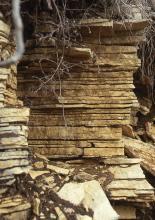 Teilansicht eines Steinbruches; zu sehen ist turmähnlich aufgeschichtetes, waagrecht gebanktes, plattiges Gestein in gelblicher Farbe.
