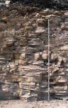 Blick auf eine Steinbruchwand; das hellgraue bis bräunlich graue, plattige Gestein ist teils waagrecht, teils schief geschichtet.