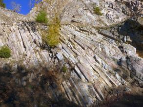 Blick aufwärts auf eine Steinbruchwand mit säulenartiger Struktur. Die Säulen verlaufen links beinahe senkrecht und werden zum rechten Bildrand hin verschrägt.