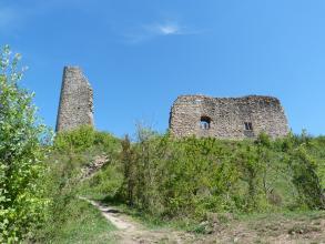 In der Bildmitte ist die Ruine einer Burg zu sehen, davor wachsen kleine Bäume und Büsche.