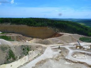 Blick von erhöhtem Standpunkt in einen großen Steinbruch, in welchem helles, fast weißes Gestein abgebaut wird. Der Steinbruch ist von Wald umsäumt.
