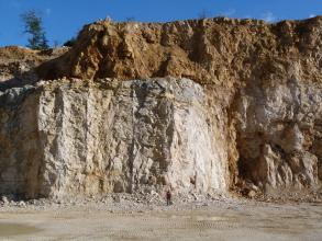 Blick auf eine Steinbruchwand. Im oberen Drittel ist der Kalkstein stark verkarstet und rötlich verlehmt. Darunter befindet sich ein dünnes, graues Band und darunter heller, massiger Kalkstein.