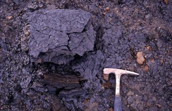 Nahaufnahme eines dunkelgrauen, in kleine Scherben gebrochenen Gesteins. Rechts unten befindet sich ein Hammer als Maßstab.