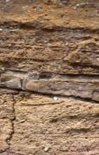 Der  Randengrobkalk (unten) wird überlagert von einem geringmächtigen Kalksandstein.