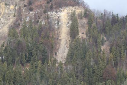 Blick aus einem Hubschrauber auf einen bewaldeten Berg, an dem links oben und in der Mitte größere Gesteinsmassen abgerutscht sind. Dadurch sind deutliche Schneisen im Wald entstanden.