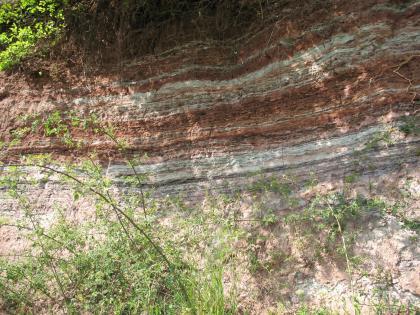 Das Bild zeigt eine Gesteinswand mit streifigen Schichten von Weiß und Rosa (unten) zu Braunrot und Hellgrau im Wechsel darüber. Am oberen Bildrand ist Wurzelwerk erkennbar, am Fuß der Wand Pflanzenwuchs.