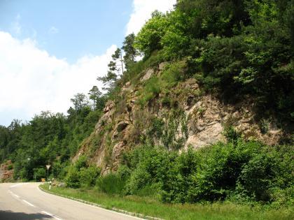 Blick von der Straße, die sich im linken Vordergrund befindet, auf eine steile, teilweise von Sträuchern und Büschen überwachsene Felswand.
