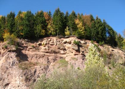 Blick auf eine hohe, rötlich graue Gesteinswand. Die unebene Kuppe ist mit Nadelbäumen bewachsen. Auch rechts im Vordergrund ragen Baumspitzen ins Bild.