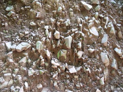 Das Bild zeigt eine Nahaufnahme von Hangschutt: Einzelne helle Blöcke befinden sich in einer Matrix aus braunem Boden.