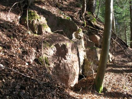 Das Bild zeigt einen nach rechts abfallenden, felsigen Waldhang. Am linken Bildrand sowie oben bedeckt welkes Laub das rötlich graue Gestein.