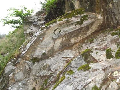 Es sind stark verfaltete hellgraue Felsen zu sehen. Zwischen den Felsen befindet sich Erde und kleiner Bewuchs.